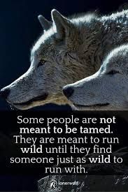 pin by porter on quotes wolf
