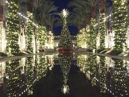 christmas lights in phoenix 2017 where to see free christmas movies in phoenix and scottsdale abc15