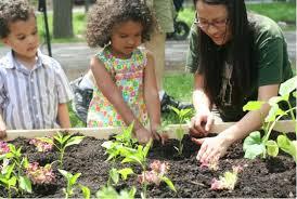 Vegetable Garden Preparation by Preparing The Vegetable Garden For Spring Veggie Gardener