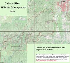 Property Lines Map Wma Topo