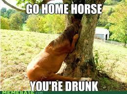 You Re Drunk Meme - no agenda news go home you re drunk meme