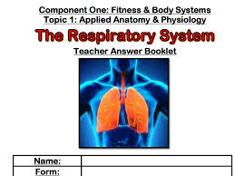 edexcel 9 1 gcse pe the respiratory system by missbutterworth pe