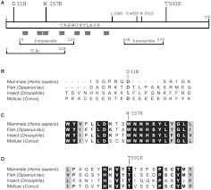 Nj Keate Home Design Inc Compound Heterozygosity Of Novel Missense Mutations In The Gamma