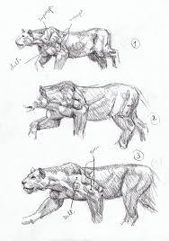 125 best mauricio anton paleoart images on pinterest extinct