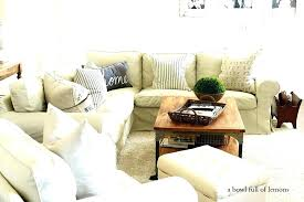 Living Room Organization Ideas Organizing Living Room Organizing Ideas Storage Solutions Small
