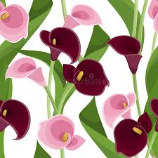purple calla seamless pattern with pink and purple calla lilies stock vector