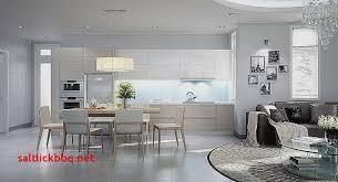photo salon cuisine ouverte image cuisine ouverte pour idees de deco de cuisine luxe idées