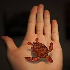 tafly transfer 3d fish turtle reptile stickers 5