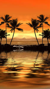 22 best palm tree paintings images on pinterest landscapes palm go further abroad travel blog