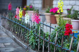 simple garden fence ideas affordable make simple beautiful garden