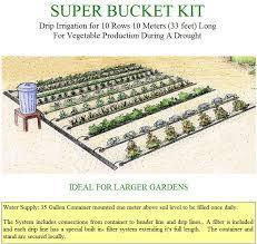 automatic above ground irrigation system startorganic vegetable
