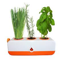 Kitchen Herb Pots The Green Garden Shop Kitchen Herb Grower Gp0321