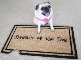 Rubber Cal Wipe Your Paws Dog Doormats