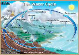 the water cycle summary usgs water science