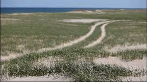 provincetown sand dunes youtube