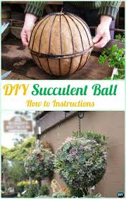 Planter Garden Ideas Diy Hanging Succulent Sphere Planter Diy Indoor