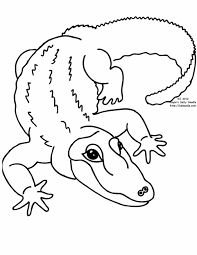 giraffe coloring pages printable pictures lion page wecoloringpage lion zoo coloring pages zoo