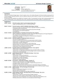 sample resume abap consultant best resumes curiculum vitae and