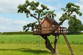 building your own tree house how to build a house building a tree house everything you need to know