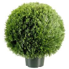 Ny Topiary - national tree company 24 in cedar pine artificial topiary in 9 in