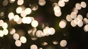 glowing festive lights tree white small bulb bokeh free