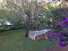 backyard possum proof fence with temporary roof garden fences