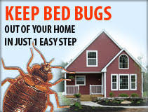 Bed Bugs New York City New York City Bed Bug Map