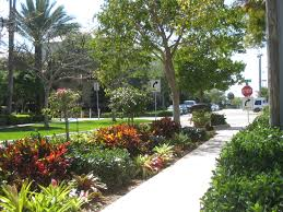 florida landscapes images Florida friendly landscaping ifas palm beach extension jpg