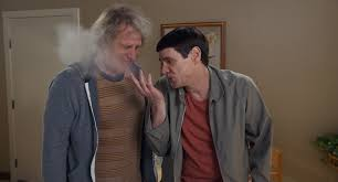 jim carrey and jeff daniels talk dumber and dumber to sequels
