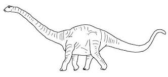 argentinosaurus coloring pages dinosaurs pictures facts