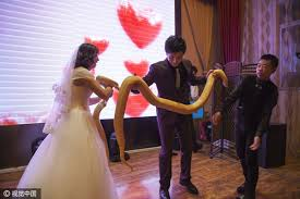 what to give as a wedding gift newlyweds give each other pythons as wedding gifts 1 chinadaily