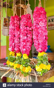 Indian Wedding Flower Garlands Hanging Flower Garlands Stock Photos U0026 Hanging Flower Garlands