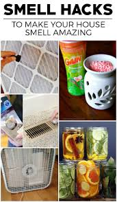 Organize Your House 616 Best Organize Your Life Images On Pinterest Organization