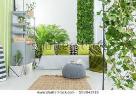Green Bookcase Green Home Interior Sofa Desk Chair Stock Photo 590252825