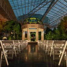 Wedding Packages In Los Angeles Nashville Zoo Venue Nashville Tn Weddingwire