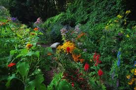 pictures of beautiful gardens with flowers beautiful butterfly garden flowers