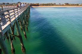 beaches palm coast and the flagler beaches