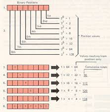html input pattern hexadecimal numbering systems