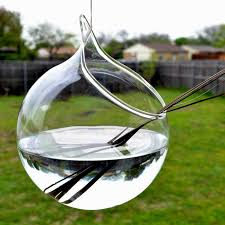 amazing glass terrarium globes 5 glass terrarium globes wholesale