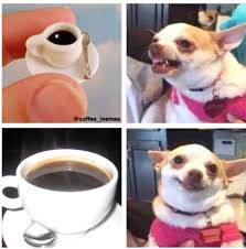 Benson Dog Meme - 50 of the funniest coffee memes on the internet