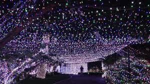net lights for outdoorsnet outdoors
