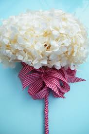Best Flowers For Weddings 33 Best Dried Hydrangea Flowers Images On Pinterest Dried
