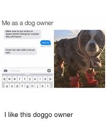 Dog Owner Meme - me as a dog owner make sure to put socks on aspen before taking
