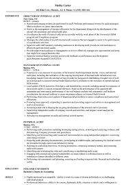 internal audit resume samples velvet jobs