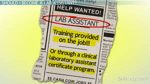 how to become a lab assistant step by step career guide