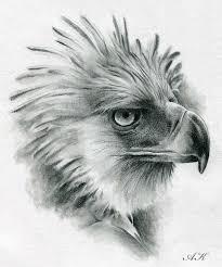 eagle tattoo clipart philippine eagle tattoo designs the best eagle of 2018