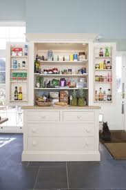 21 best farrow and ball case study images on pinterest paint