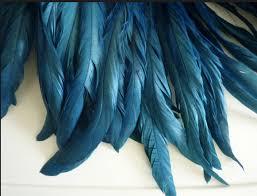 lisa mende design the pros share their favorite 15 u0027peacock blue
