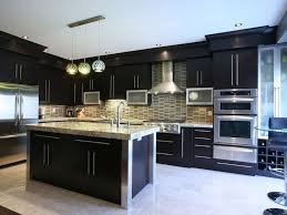 Nice Kitchen Cabinets by Kitchen Cabinet Nice Kitchens Amazing Kitchen Black Cabinet