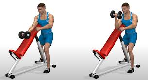 Incline Bench Technique Dumbbell Curl Over Incline Bench U2022 Bodybuilding Wizard